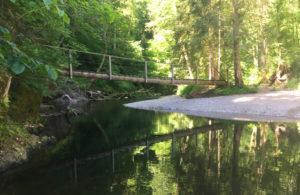 Wegwanderung - Schluchtensteig im Schwarzwald